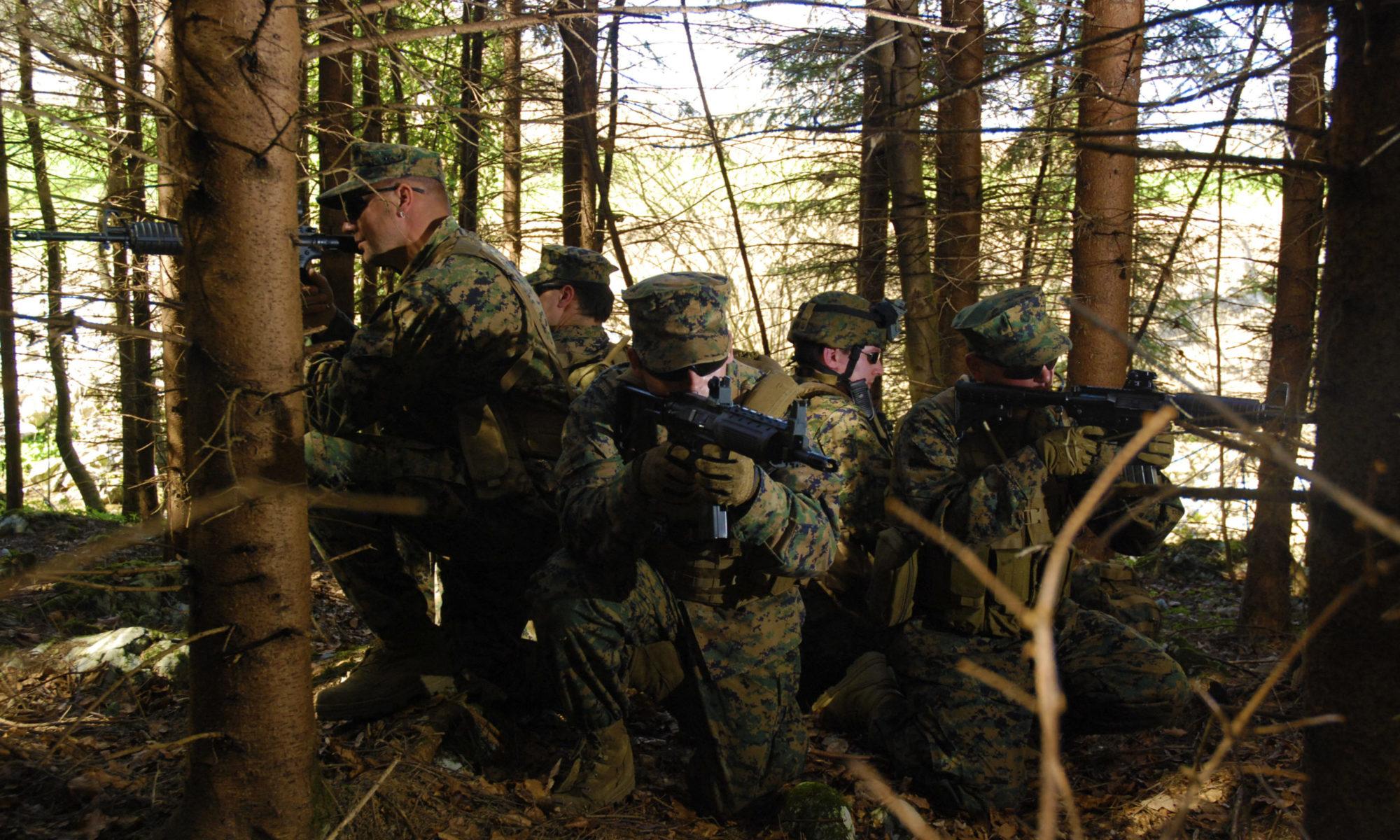 AK Delta force